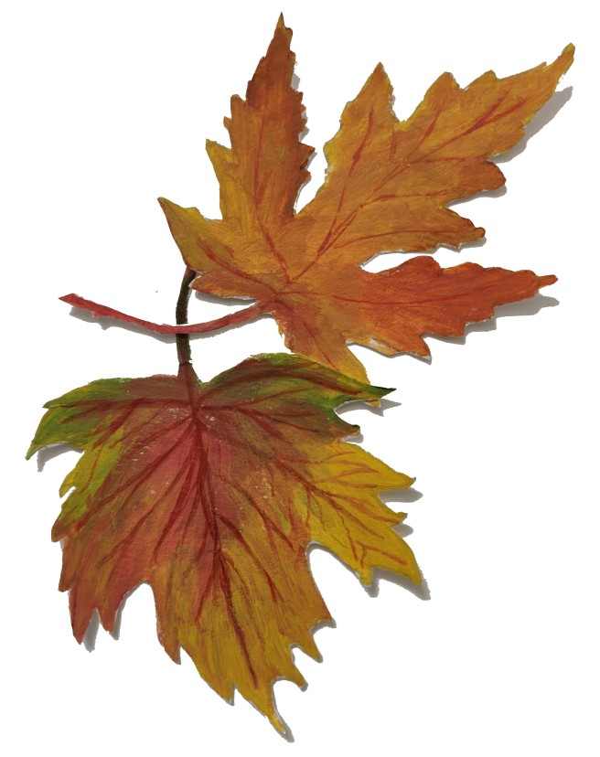 Autumn Leaf_2